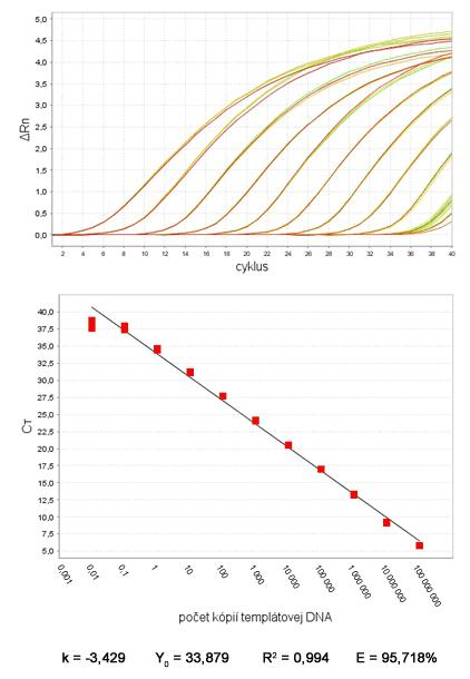 Typický amplifikačný graf sériovo riedeného templátu štandardy a graf kalibračnej krivky so závislosťou počtu kópií templátovej DNA od Ct hodnôt