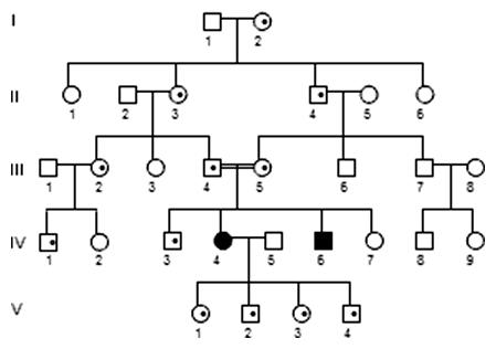 Autozómovo recesívna dedičnosť (AR)