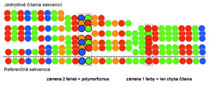 Detekcia polymorfizmu pomocou systému SOLiD