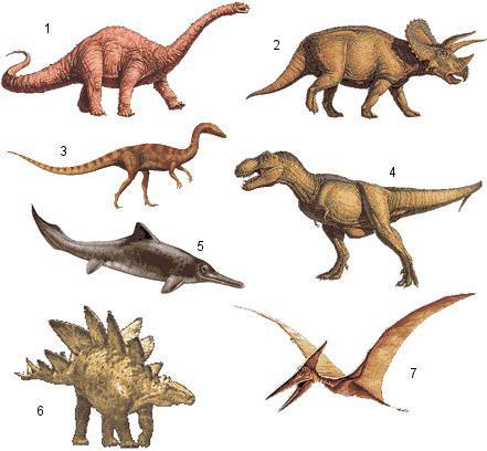 Dinosaury (1 Apatosaurus, 2 Triceratops, 3 Coelophysis, 4 Tyrannosaurus, 5 Mixosaurus, 6 Stegosaurus, 7 Pteranodon)