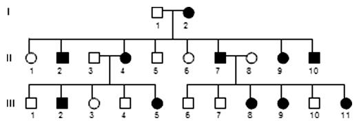 Gonozómovo dominantná dedičnosť (XD)