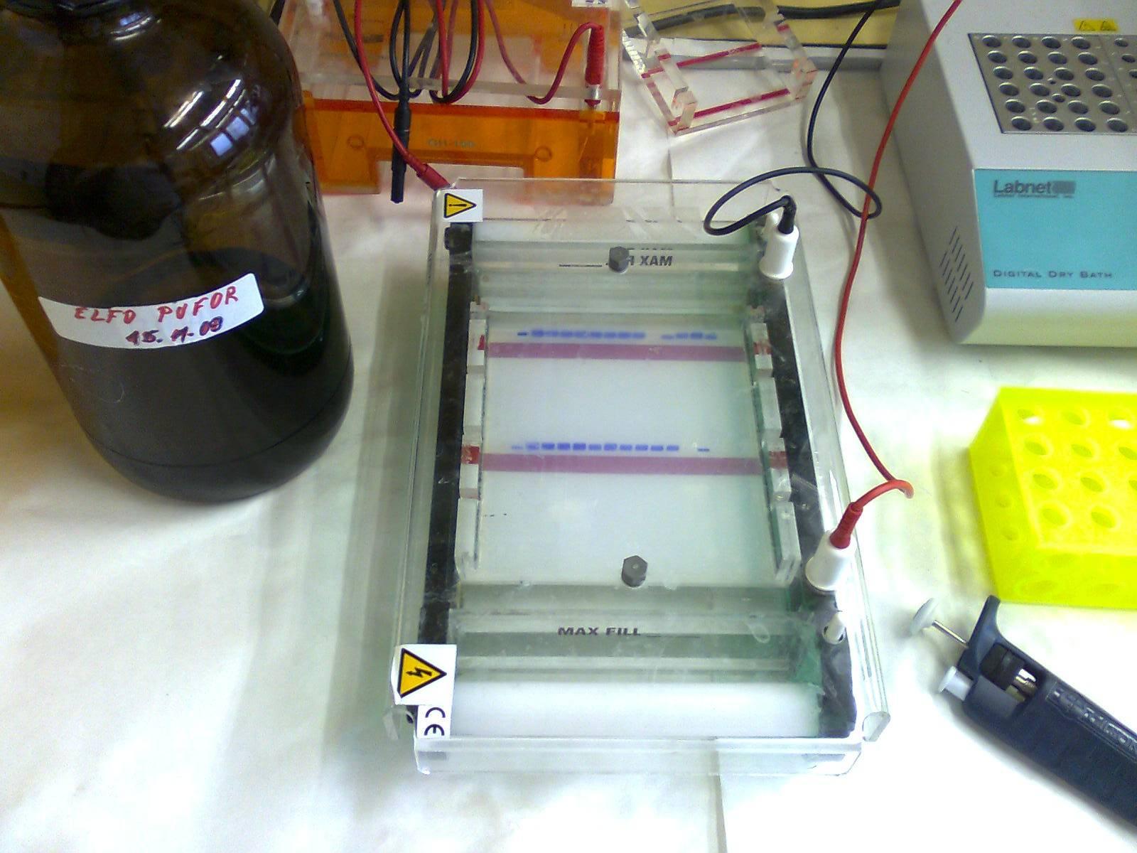 Elektroforetická aparatúra na agarózovú ELFO