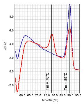 Analýza krivky topenia vo dvoch vzorkách (teplota topenia nešpecifického (78°C) a špecifického PCR produktu (89°C))