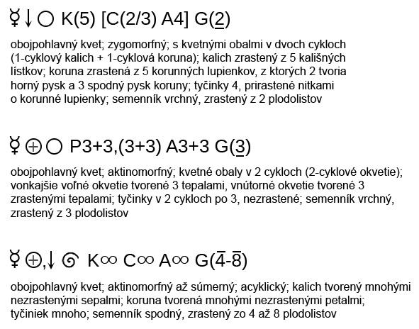 Kvetný vzorec - príklady