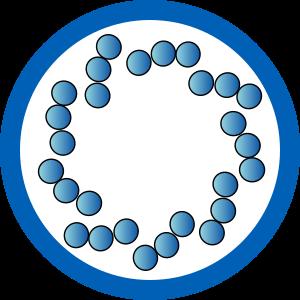 Prierez centrioly - štruktúra mikrotubulov 9(3)