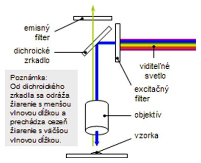 Princíp fungovania dichroického zrkadla vo fluorescenčnom mikroskope