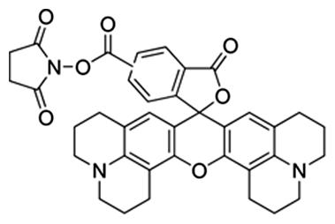5(6)-karboxy-X-rodamín N-succinimidyl ester - základná fluorescenčná zložka ROX
