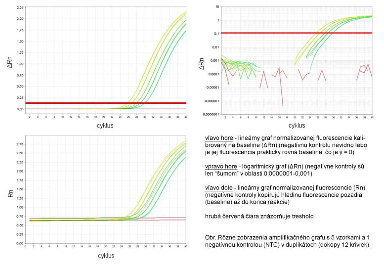 Rôzne zobrazenia amplifikačného grafu s 5 vzorkami a 1 negatívnou kontrolou (NTC) v duplikátoch (dokopy 12 kriviek)