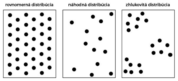 Typy distribúcie v populácii