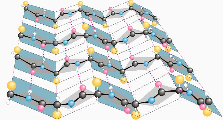 Sekundárna štruktúra skladaného listu